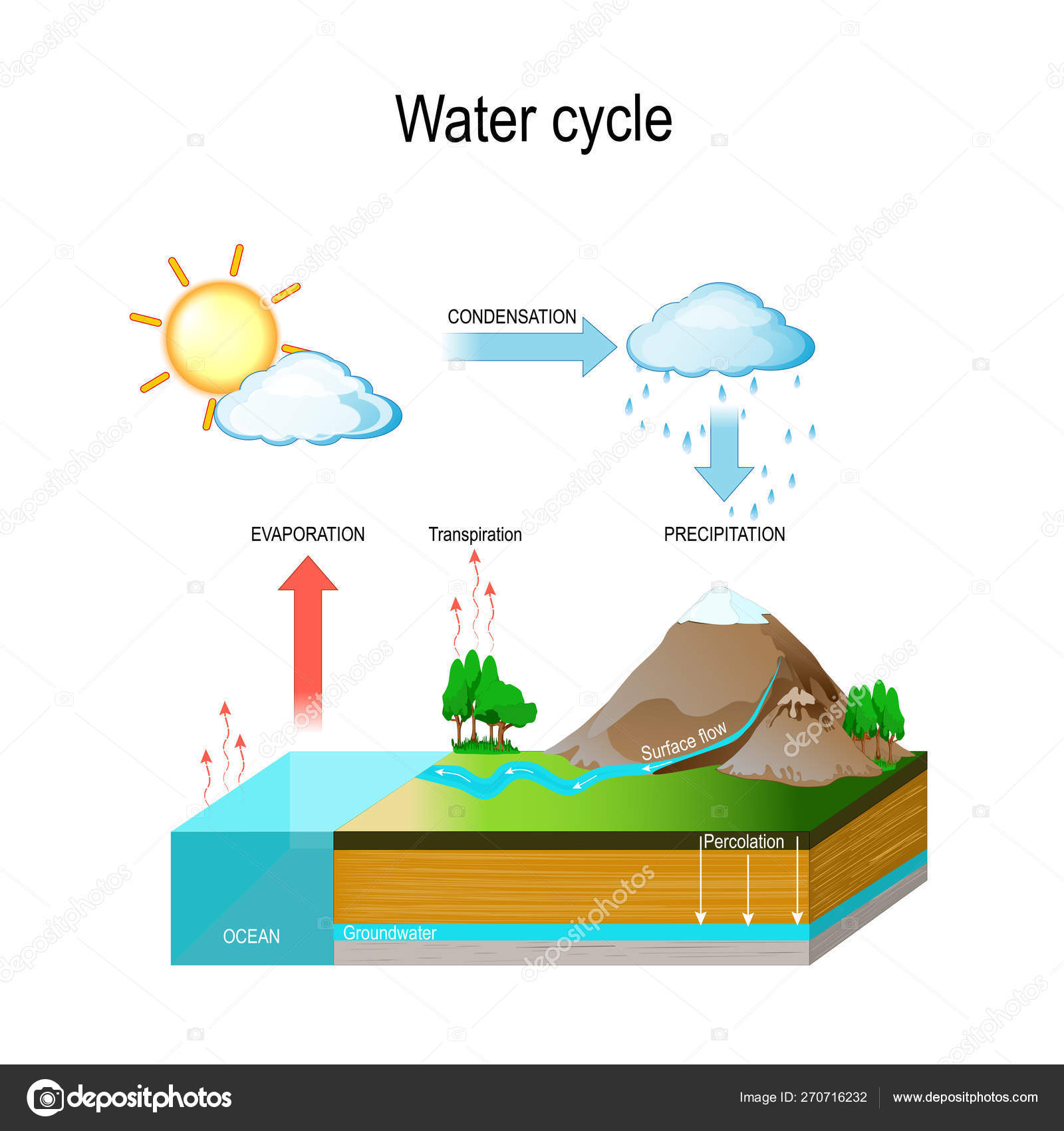 hight resolution of the sun which drives the water cycle heats water in oceans and seas water evaporates as water vapor into the air isometric diagram vector illustration