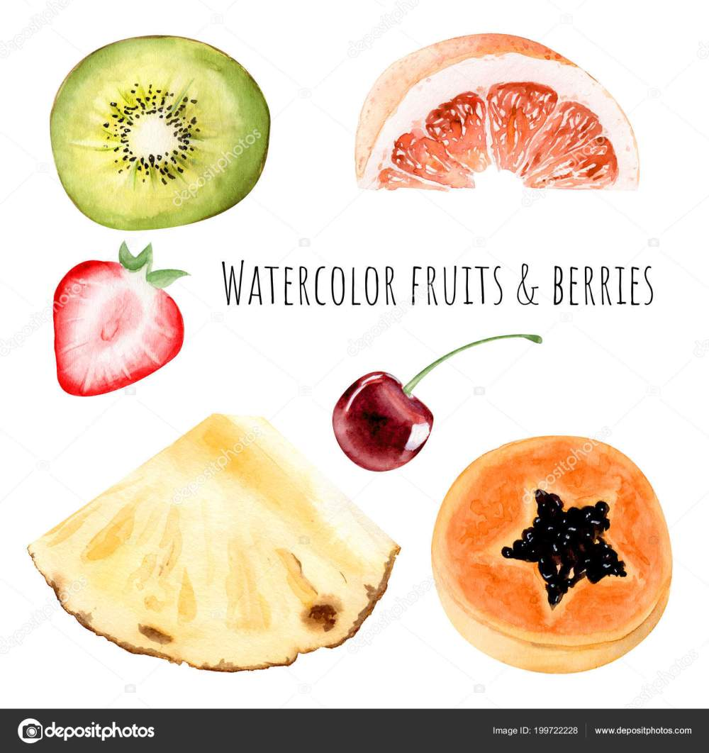 medium resolution of hand drawn watercolor illustration clipart object kiwi strawberry grapefruit pineapple stock photo