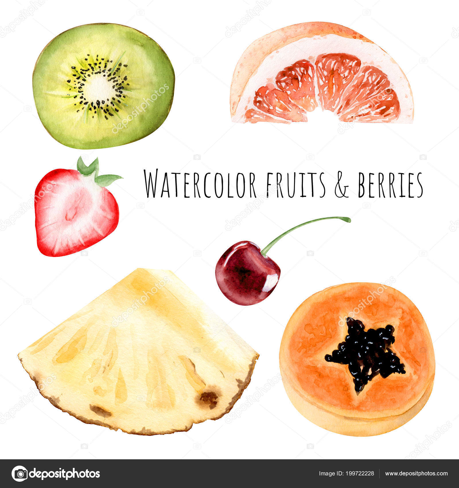 hight resolution of hand drawn watercolor illustration clipart object kiwi strawberry grapefruit pineapple stock photo
