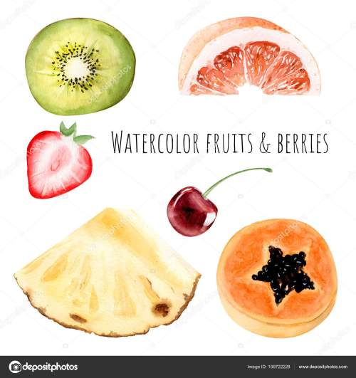 small resolution of hand drawn watercolor illustration clipart object kiwi strawberry grapefruit pineapple stock photo