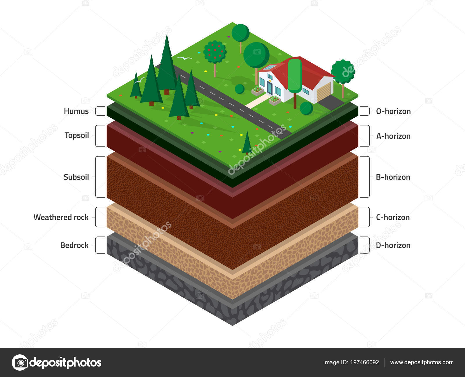 hight resolution of isometric named layers soil top layer green grass house forest stock vector