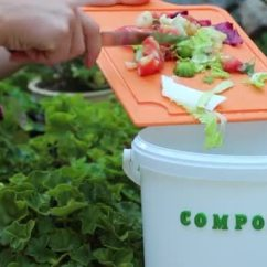 Compost Bin For Kitchen Antique Furniture 有机厨房垃圾收集堆肥在家回收箱中的厨屑 图库视频影像 C Fevziie 205156072