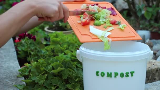 kitchen compost container furniture stores 有机厨房垃圾收集堆肥在家回收箱中的厨屑 图库视频影像 c fevziie 205156072