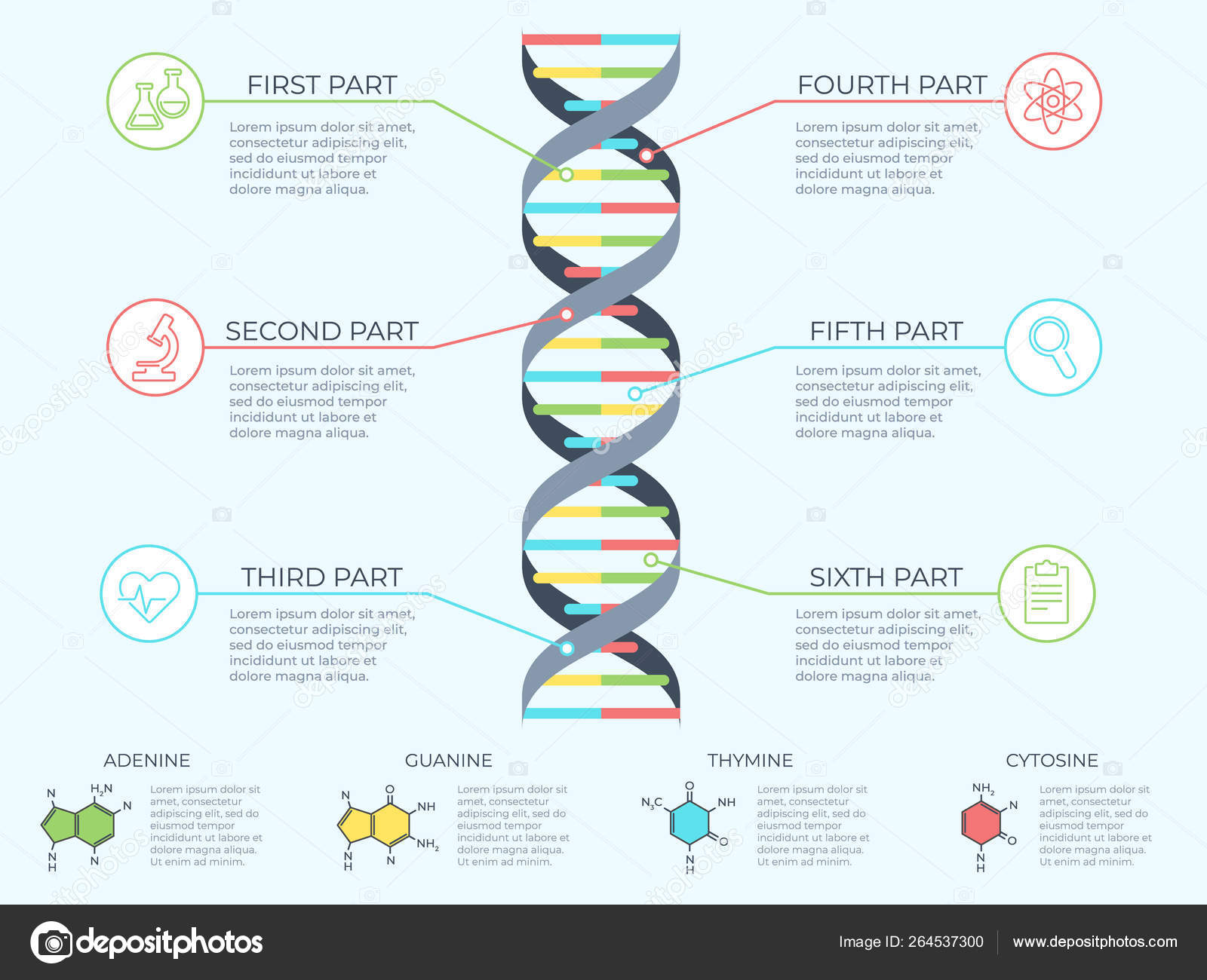 hight resolution of dna infographic genetic spiral genomic model molecule diagram and adn pattern structure chart medicine molecular rna chromosome infographics or dna gene
