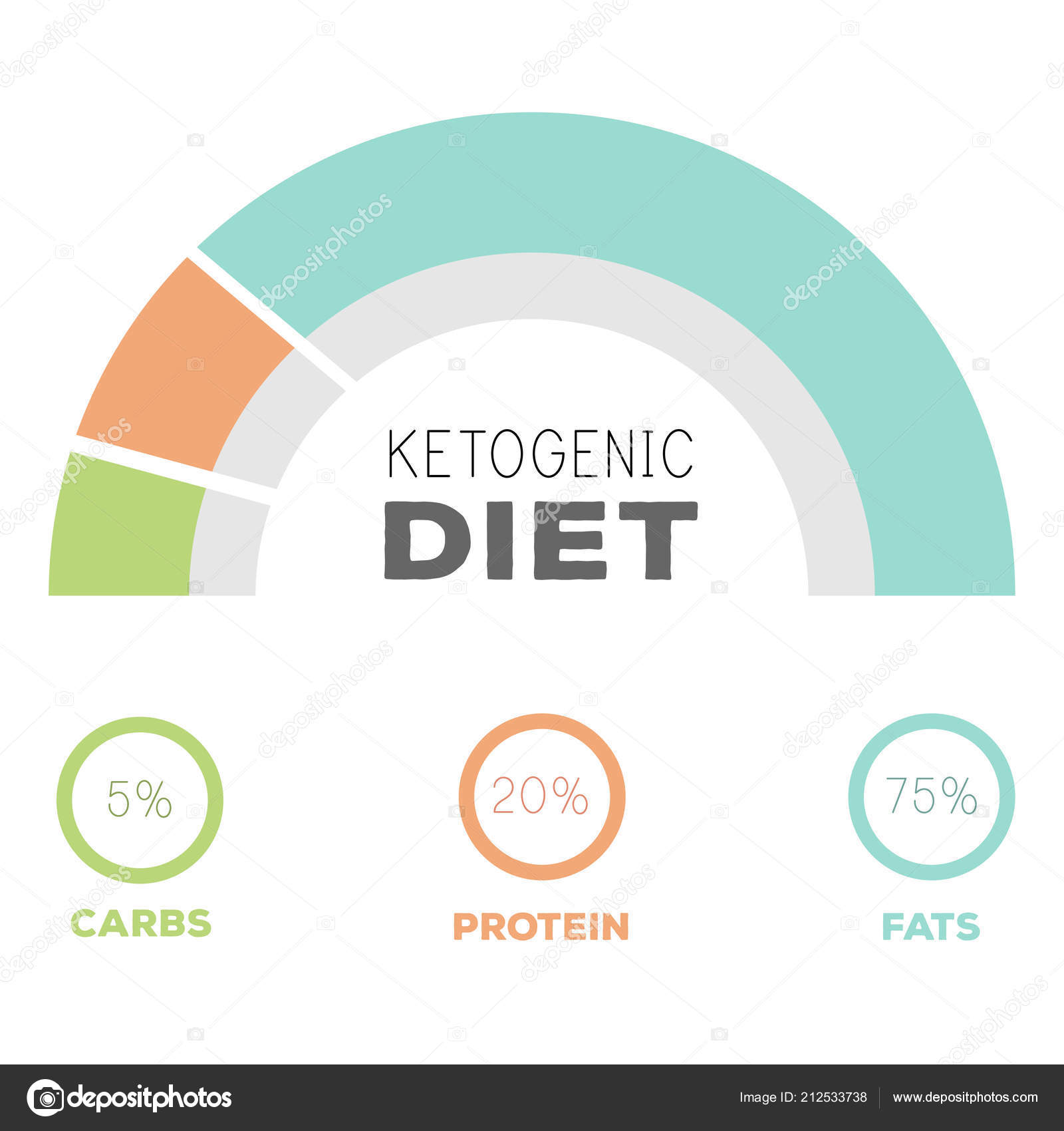 hight resolution of ketogenic diet macros diagram low carbs high healthy fat stock vector
