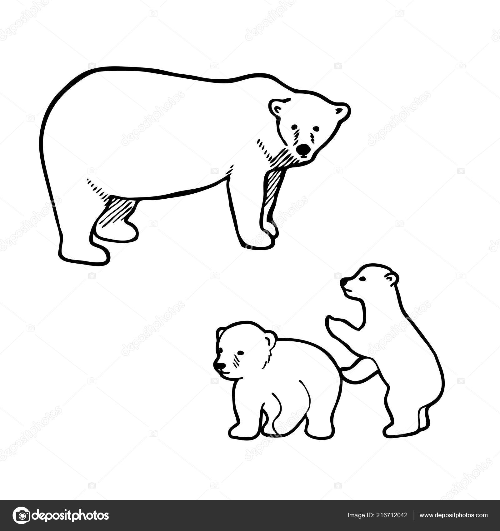 Polar Bear Playing Cubs Outline Vector Illustration