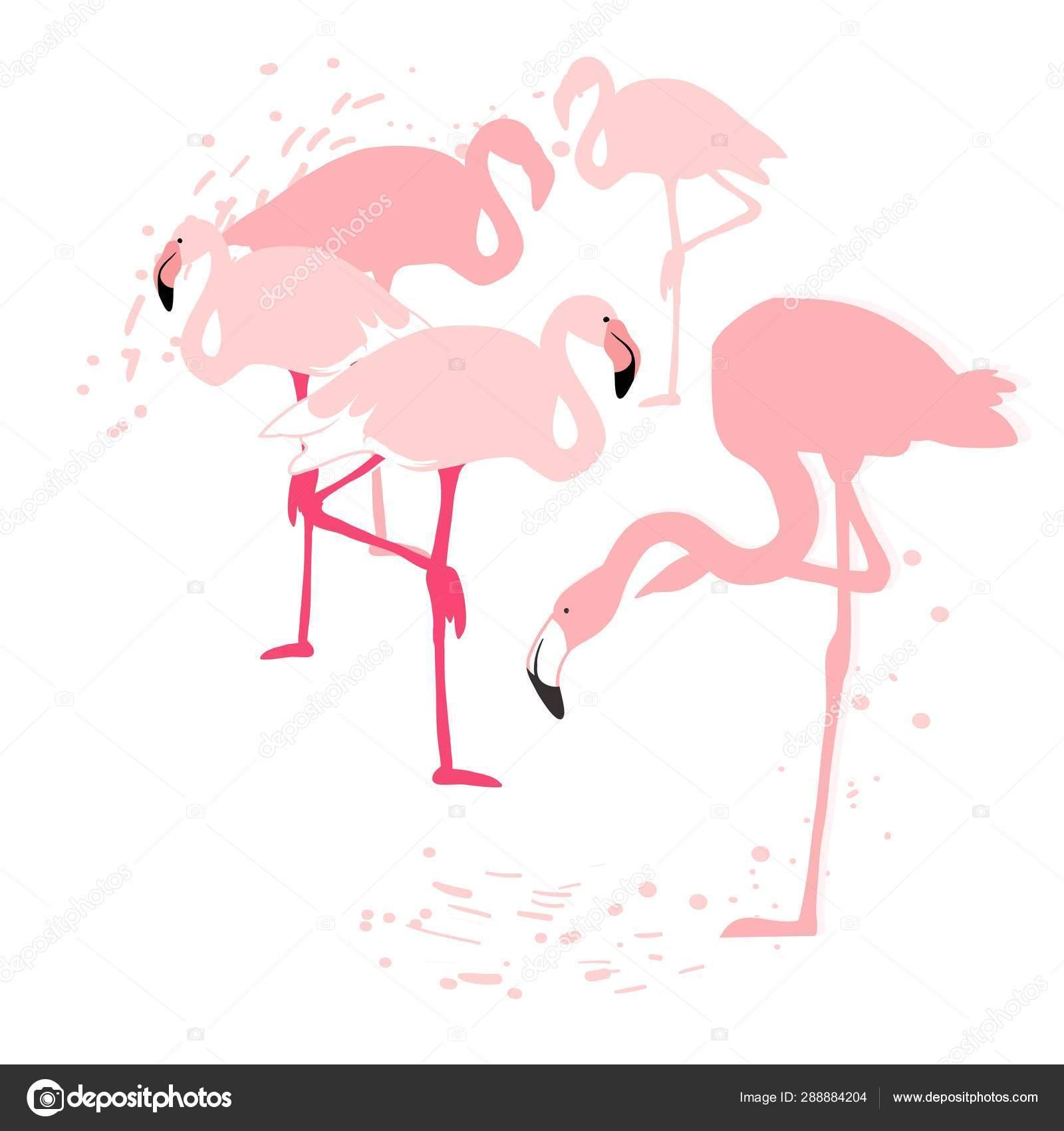 pink flamingo silhouette flock