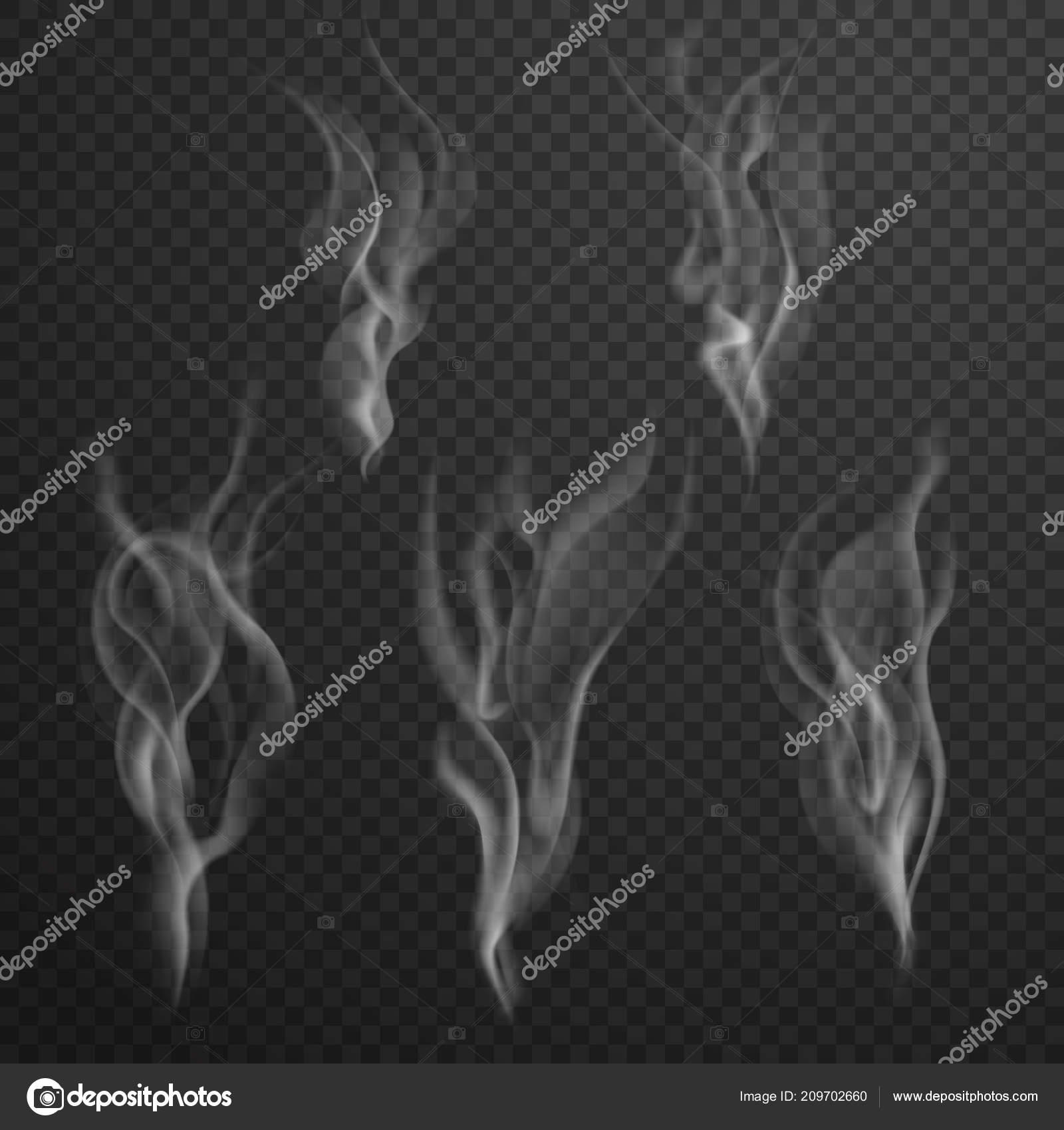 vector tea smoke set