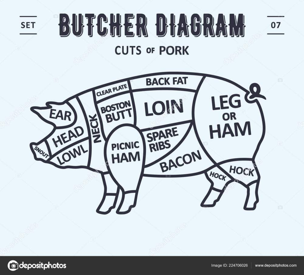 medium resolution of cut meat set poster butcher diagram scheme pork vintage typographic stock vector