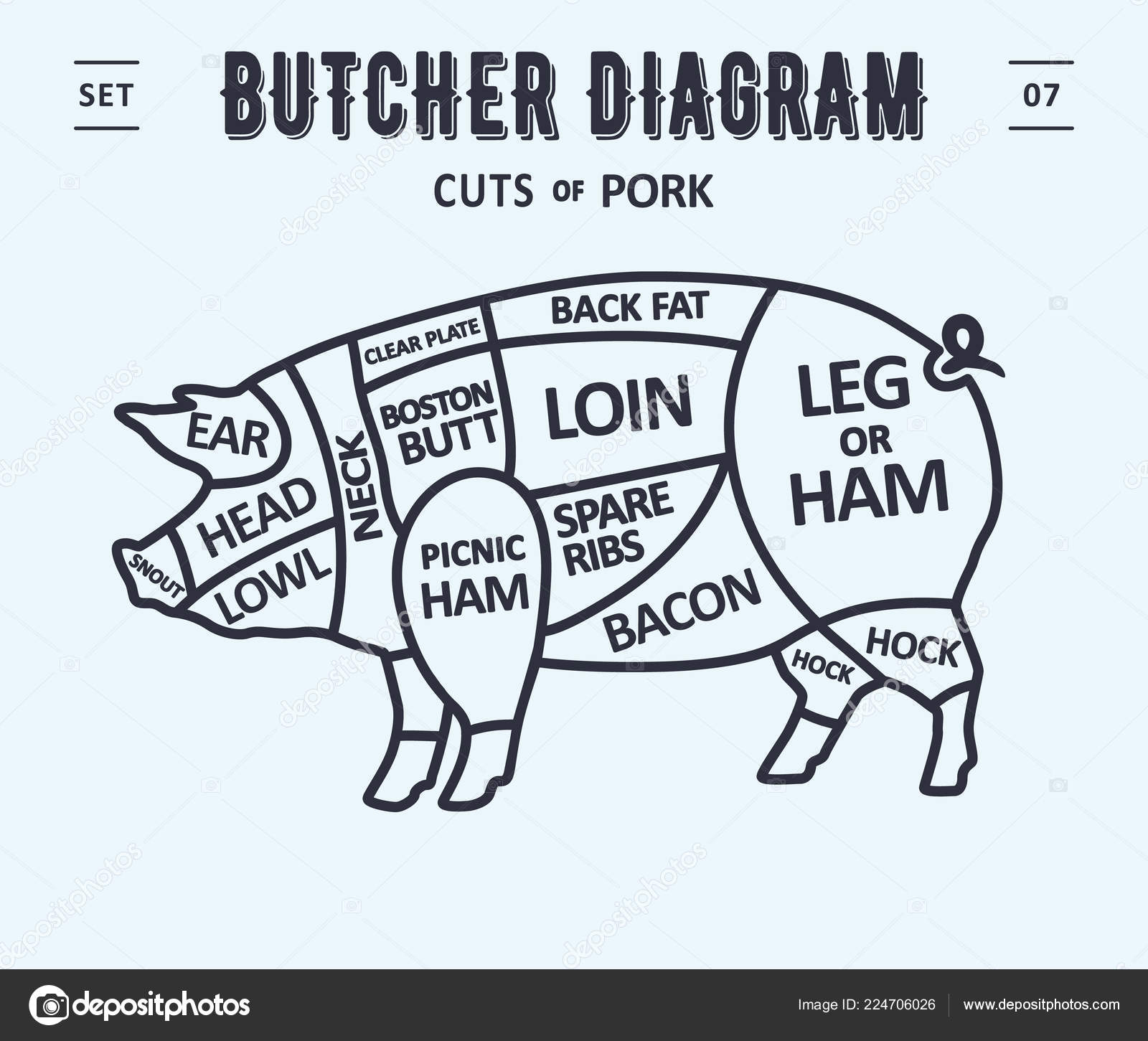 hight resolution of cut meat set poster butcher diagram scheme pork vintage typographic stock vector