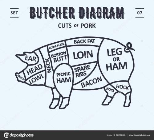 small resolution of cut meat set poster butcher diagram scheme pork vintage typographic stock vector
