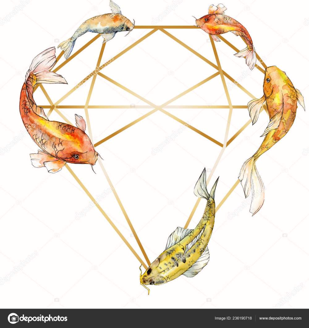 medium resolution of red sea and exotic fishes inside goldfish aquarelle elements for background texture wrapper pattern frame border ornament square