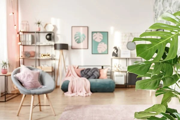 Roze Deken Groene Matras Gezellige Slaapkamer Interieur