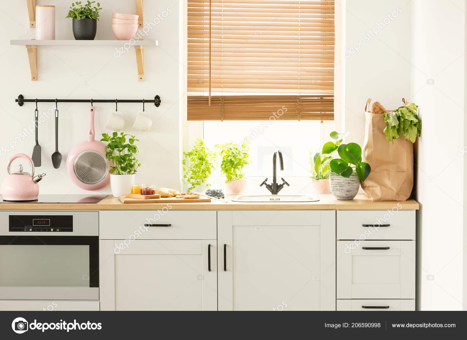 www.kitchen cabinets wire kitchen rack 真实照片的厨房橱柜台面上的植物购物袋窗户与窗帘在厨房内部 图库照片 真实照片的厨房橱柜台面上的植物购物袋窗户与窗帘在厨房