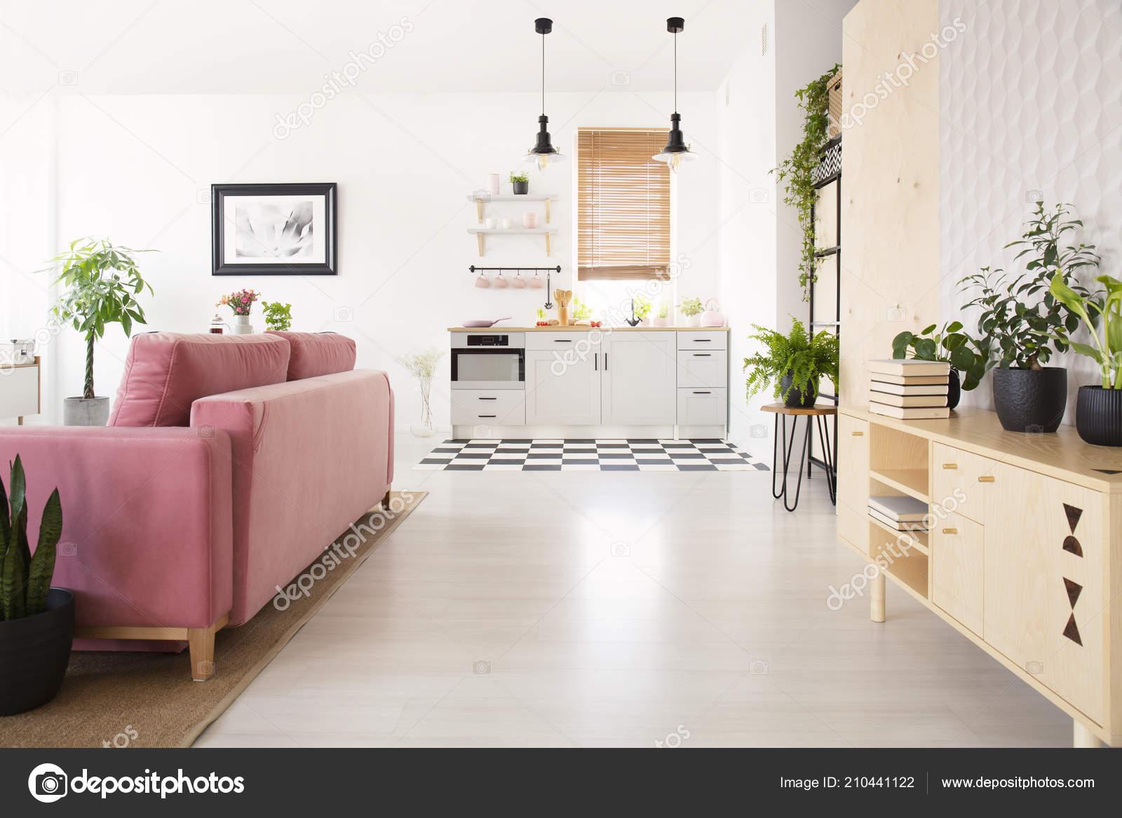 pink kitchen rug cheap motels with kitchens 明亮的起居室的真实照片与许多新鲜的植物木橱柜与书粉红色休息室和小厨房 明亮的起居室的真实照片与许多新鲜的植物 木橱柜与书 粉红色休息室和小厨房 照片作者photographee eu