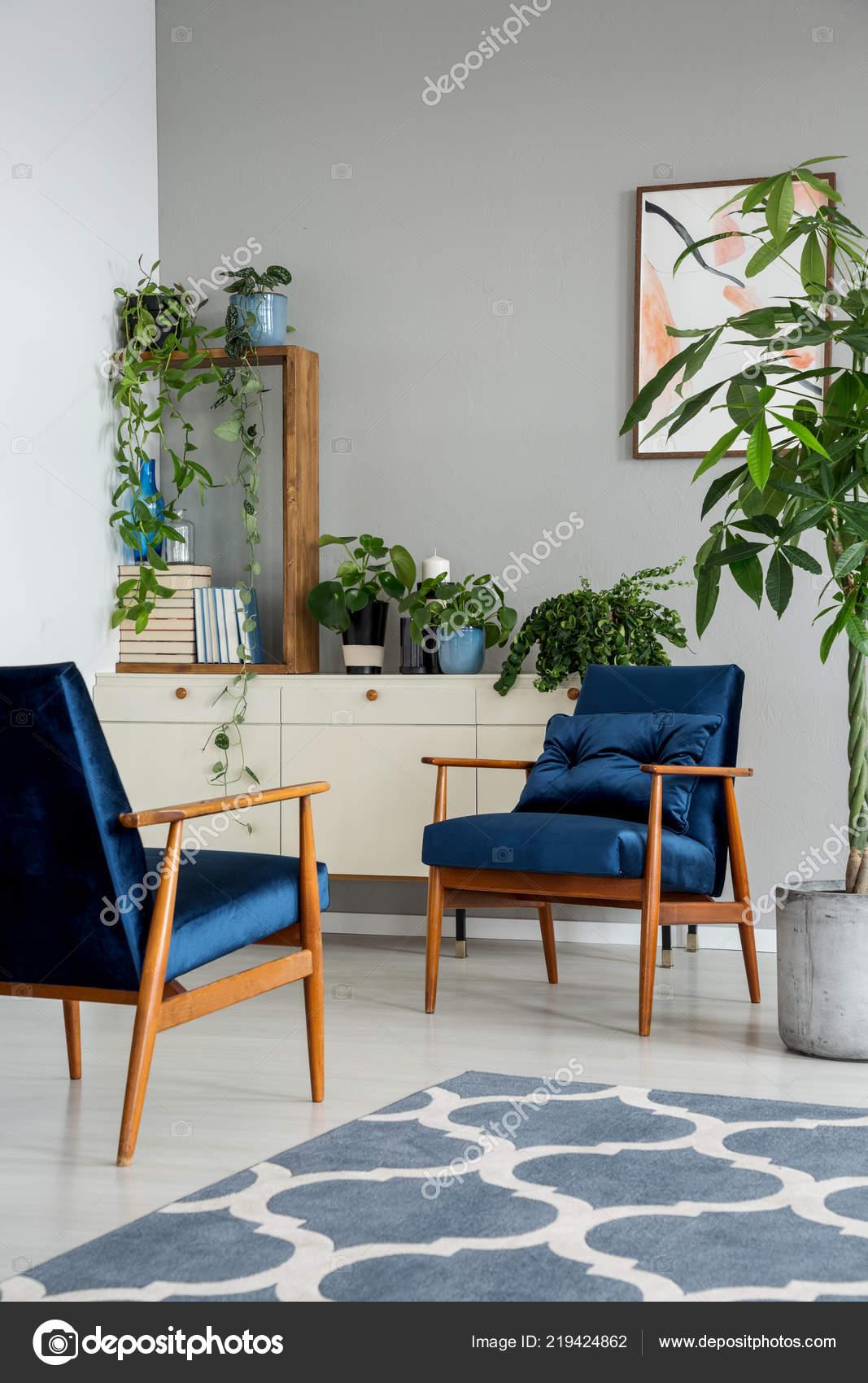 navy blue kitchen rugs california pizza app 灰色公寓内的蓝色扶手椅旁边有图案地毯橱柜上有植物真实照片 图库照片 灰色公寓内的蓝色扶手椅旁边有图案地毯橱柜上有植物