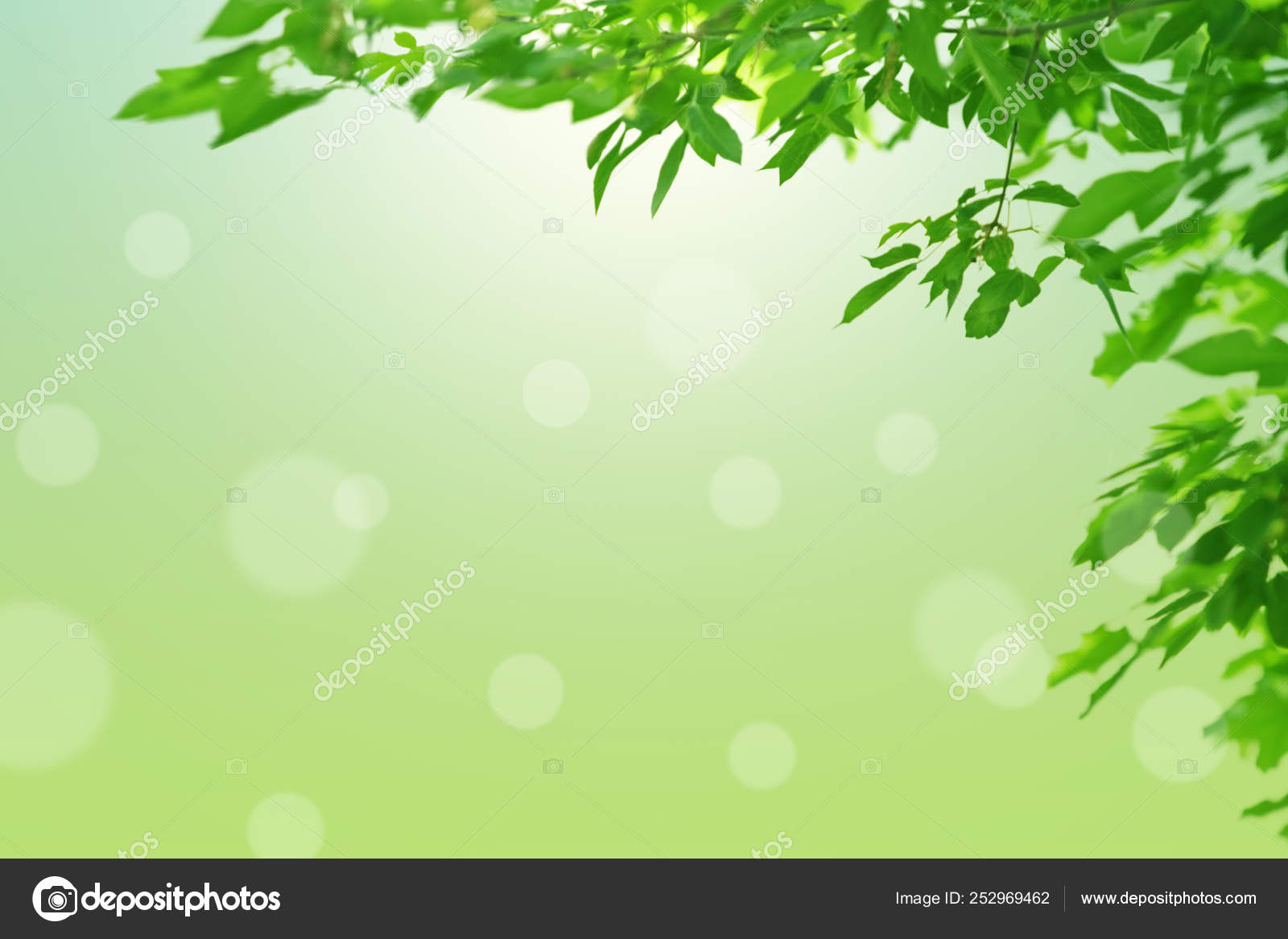 https fr depositphotos com 252969462 stock photo natural spring background green leaves html