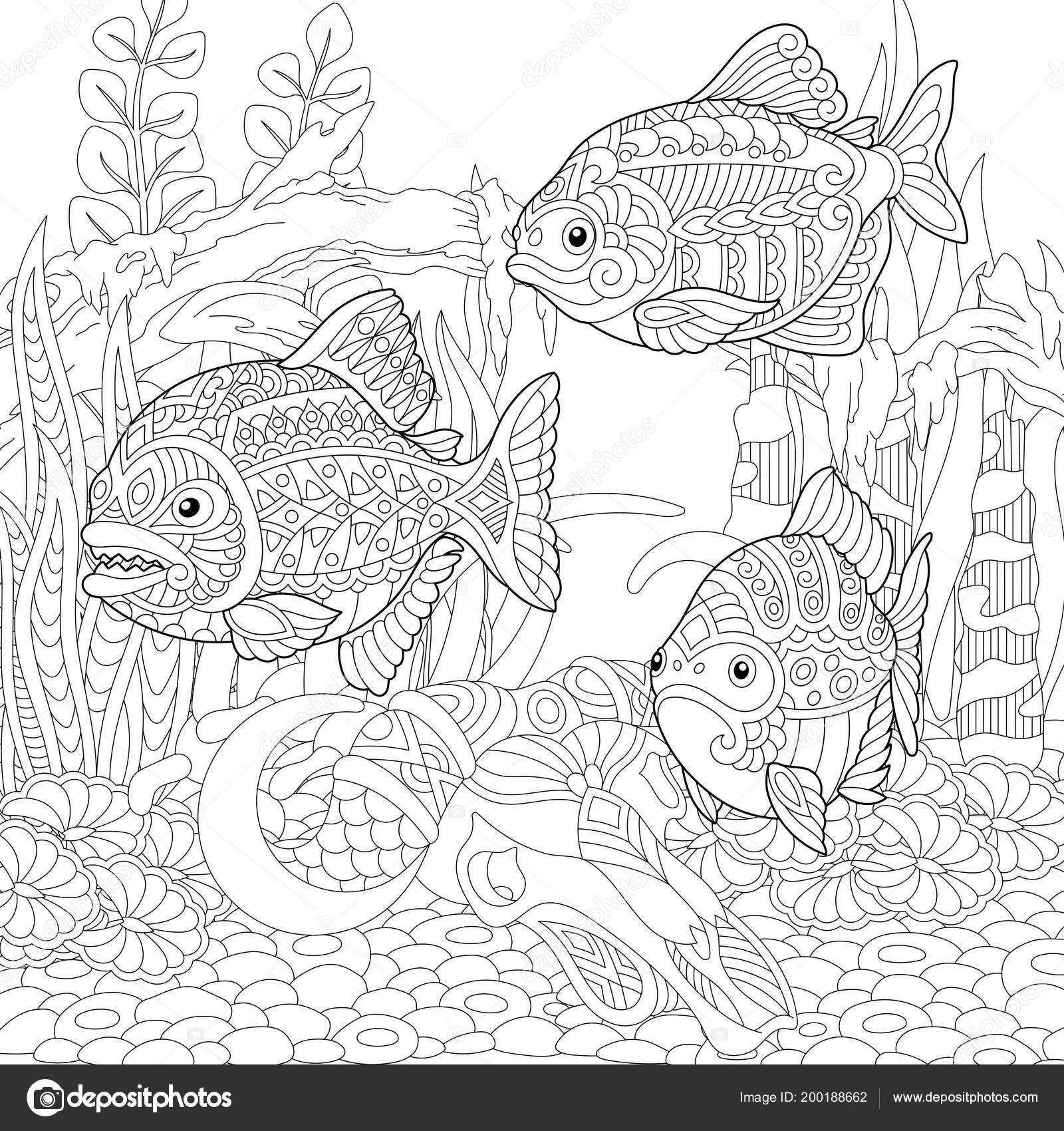 Vorlage Piranha Pflanzen Malvorlagen