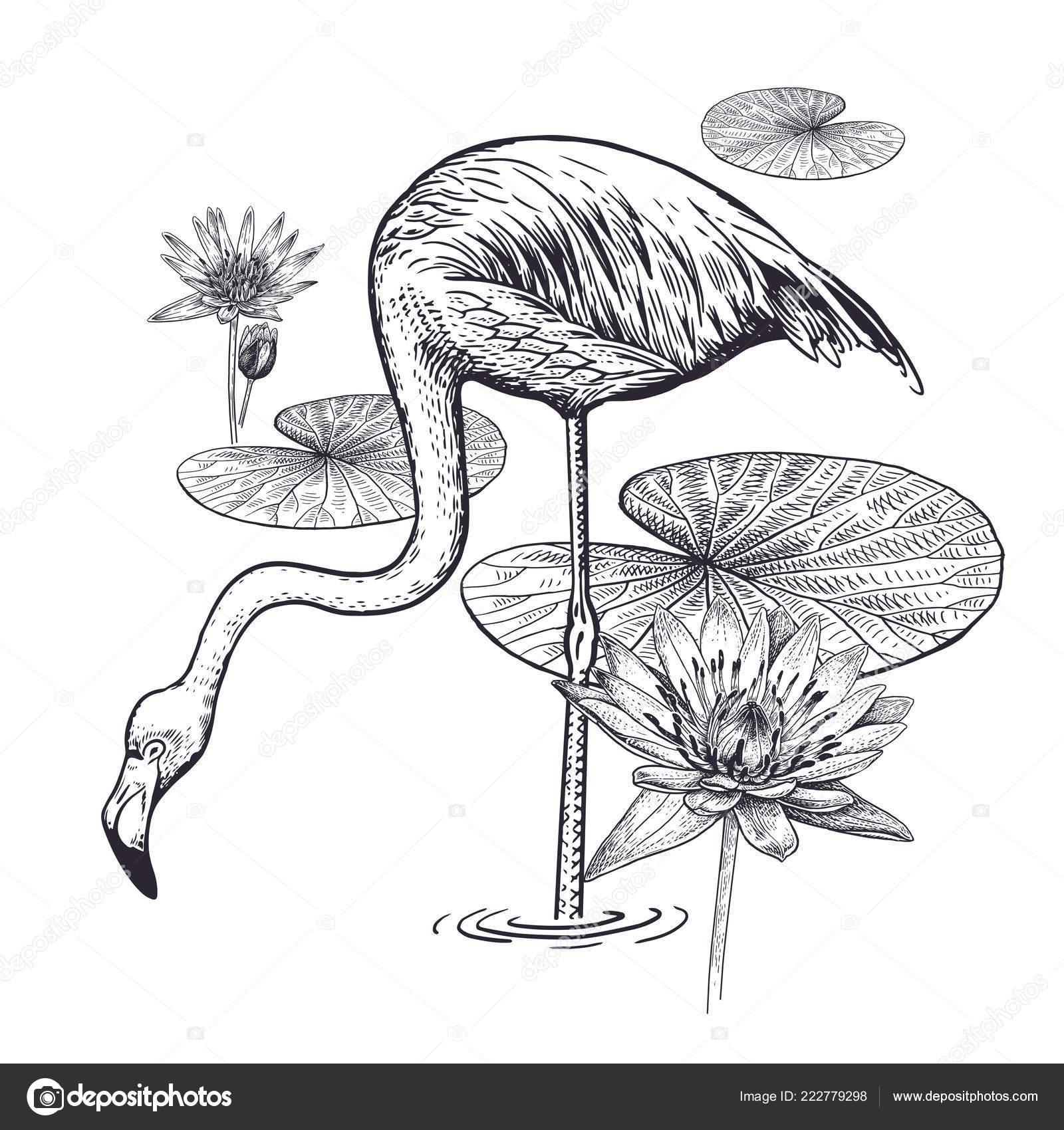 decoration exotic bird flowers