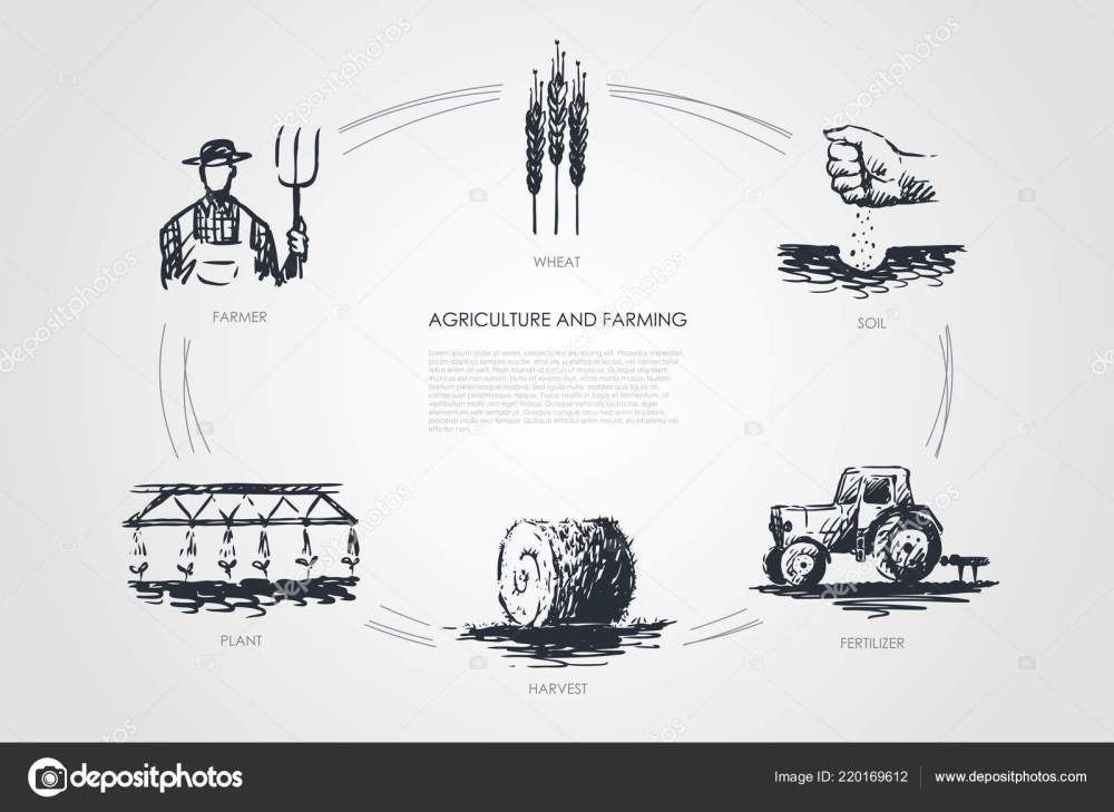 medium resolution of agriculture and farming farmer soil wheat plant harvest fertilizer vector concept set hand drawn sketch isolated illustration vector by elada