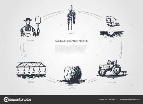 small resolution of agriculture and farming farmer soil wheat plant harvest fertilizer vector concept set hand drawn sketch isolated illustration vector by elada