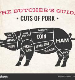 butchery diagram with silhouette of pig and cuts of pork on background of old paper vector illustration vector by macrovector [ 1600 x 1208 Pixel ]