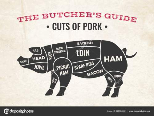 small resolution of butchery diagram with silhouette of pig and cuts of pork on background of old paper vector illustration vector by macrovector