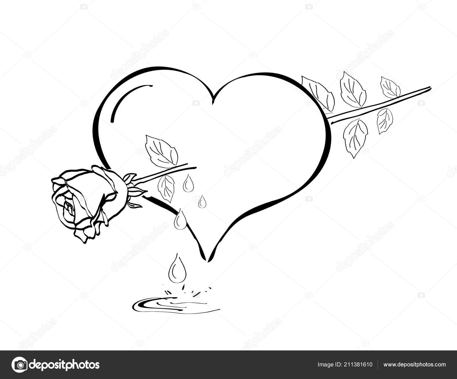 Illustration Broken Heart Rose Arrow Stock Photo C Sidliks 211381610