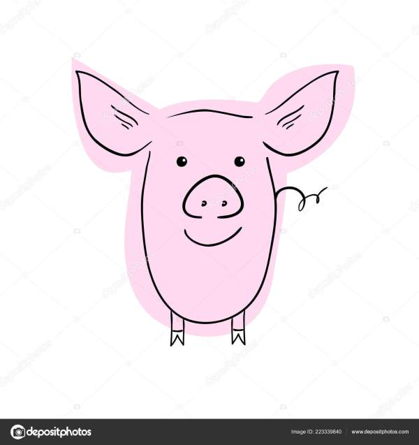 20 Cute Easy To Draw Pig Pictures And Ideas On Meta Networks