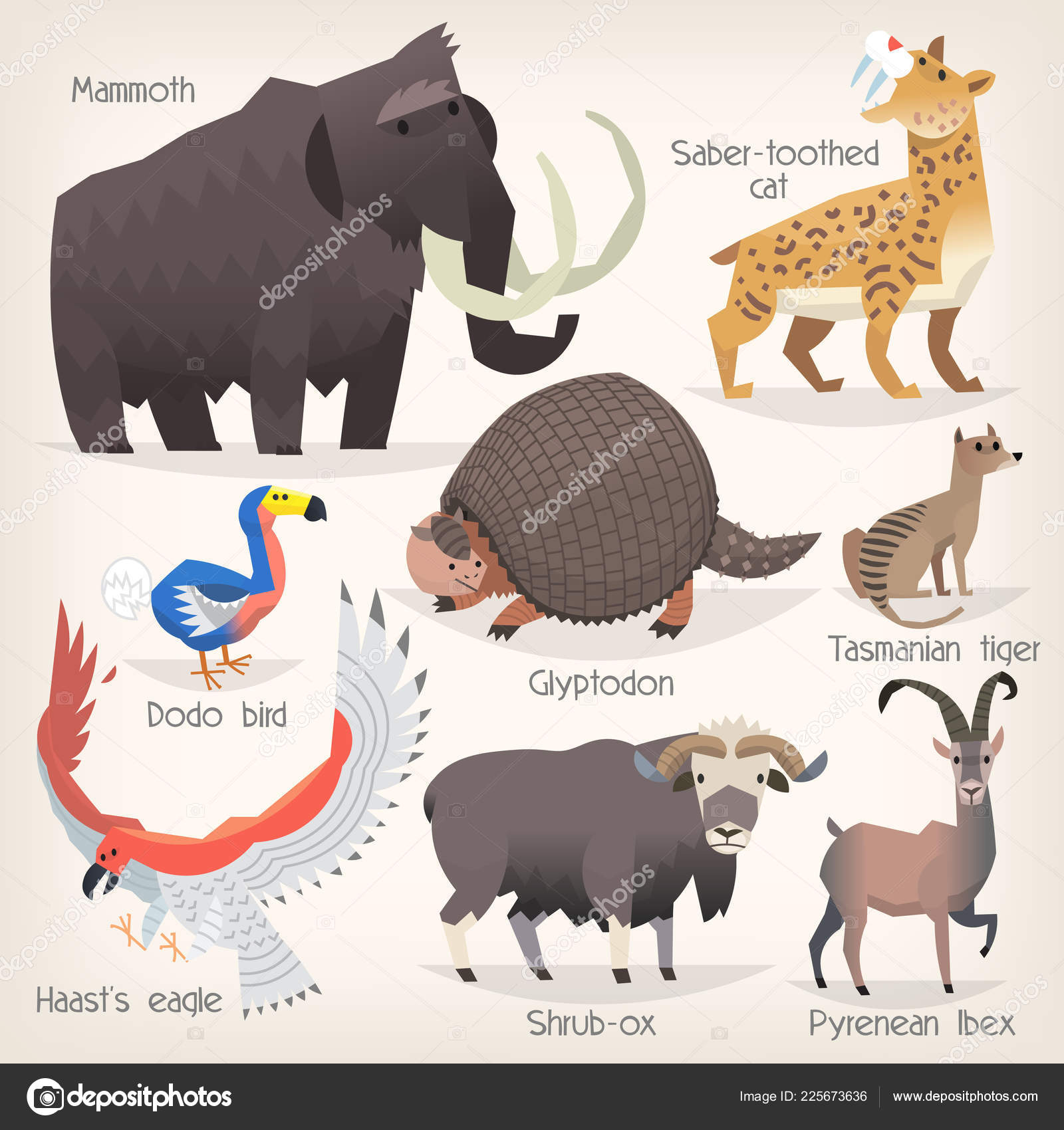 Pictures Vertebrates And Their Names