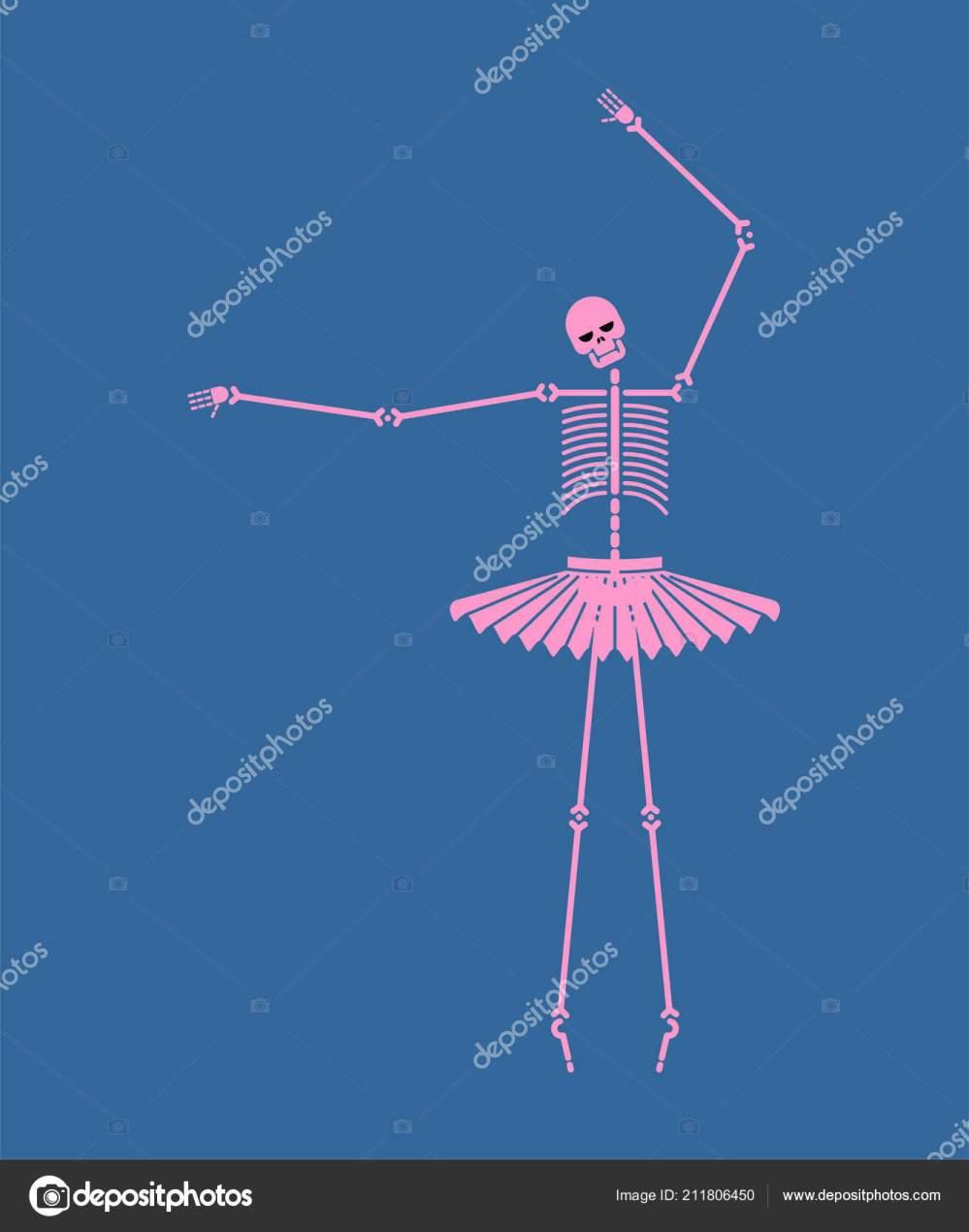medium resolution of skeleton ballerina isolated skull bones ballet halloween vector illustration stock vector