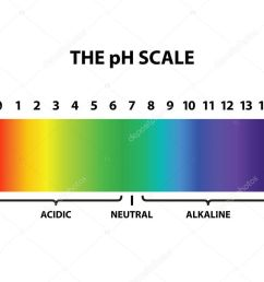 colored the ph scale rainbow isolated vector illustration [ 1024 x 829 Pixel ]