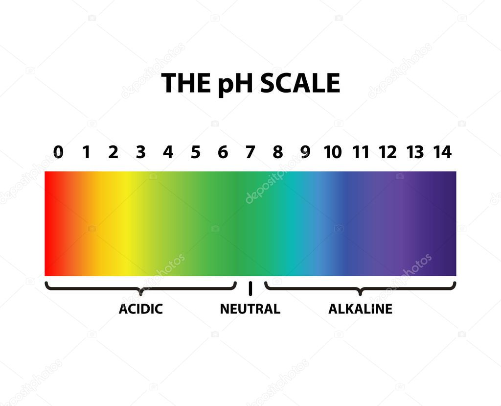 hight resolution of colored the ph scale rainbow isolated vector illustration