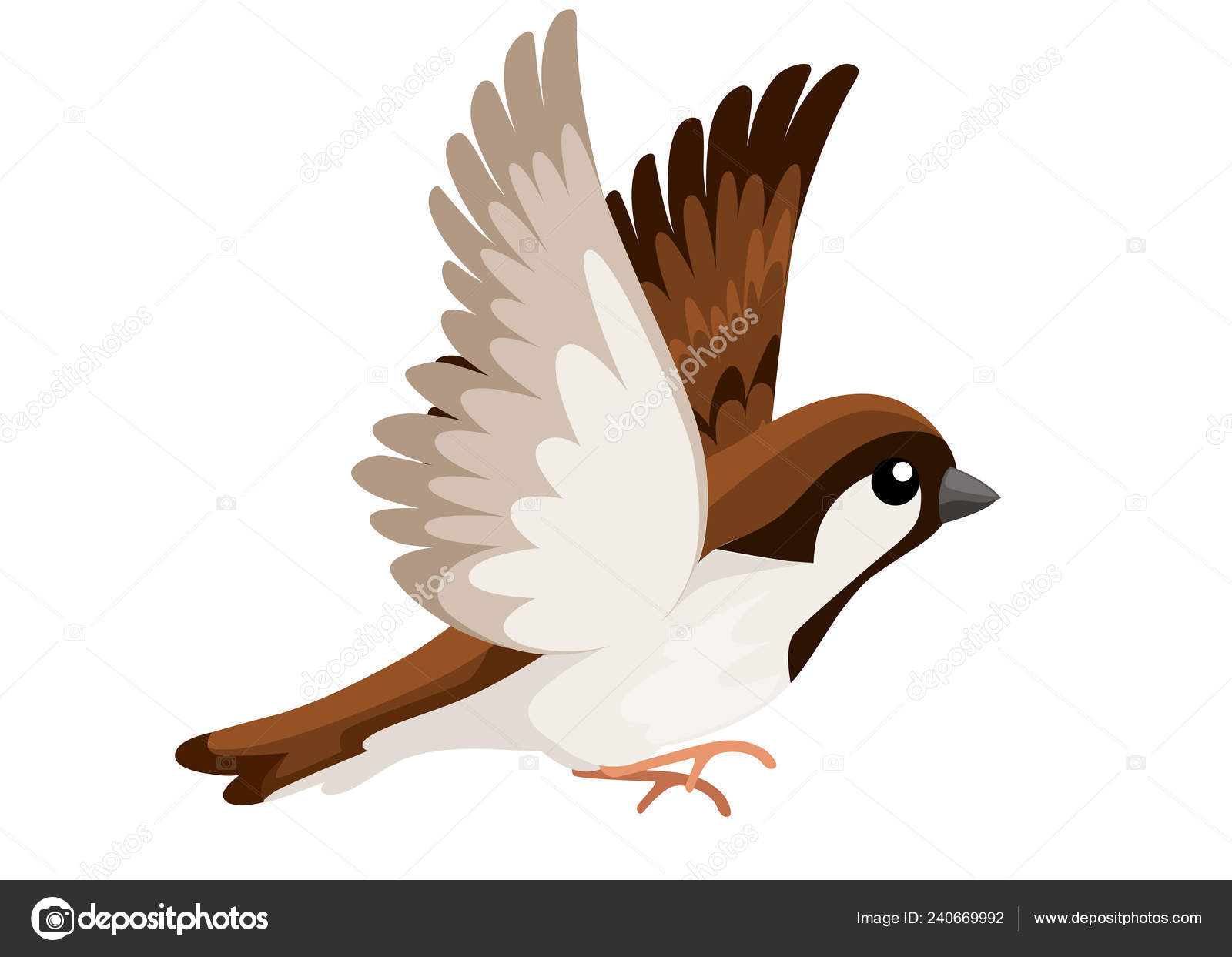 side view flying sparrow