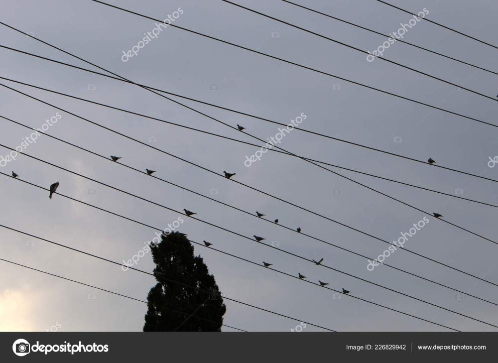 medium resolution of electrical wires support which electricity stock photo