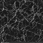 Black Marble Seamless Texture Stock Photo C Timxez 205286054