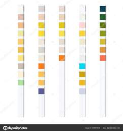 reagent test strips urinalysis automatic analyzer physical chemical properties cellular stock vector [ 1572 x 1700 Pixel ]