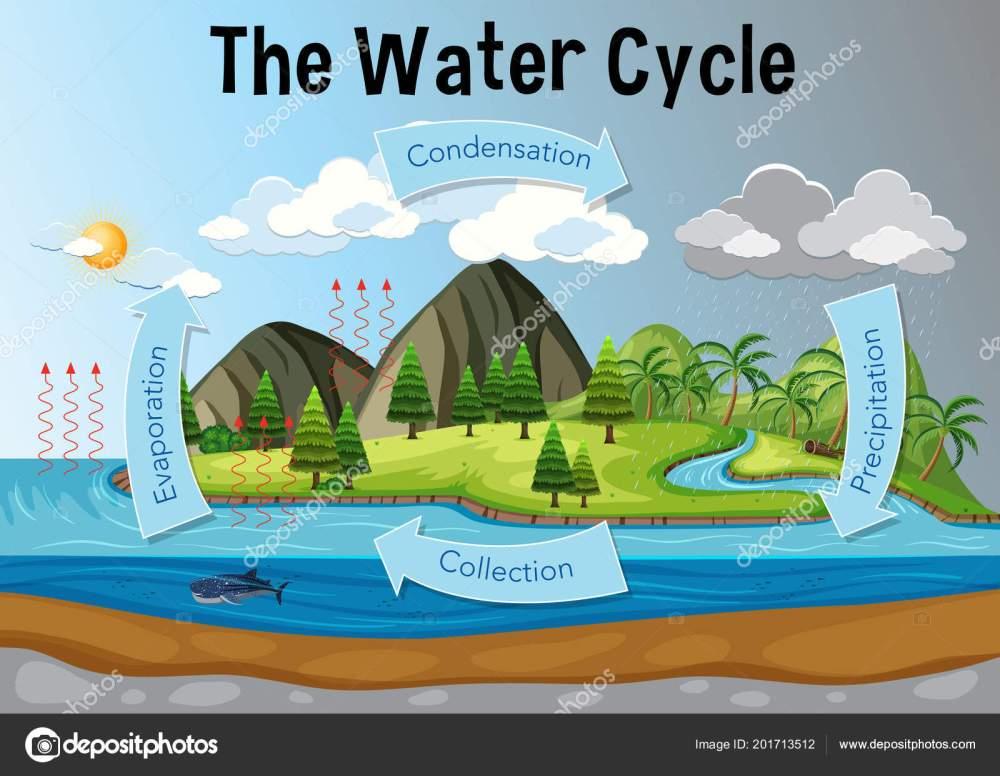 medium resolution of la ilustraci n del diagrama de ciclo del agua vector de brgfx