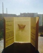 Patrizia Oliva- Life of Elitra Lipozi-liner notes - fold