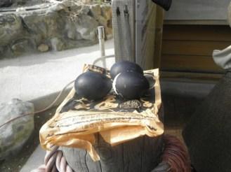 Die schwarzen Eier.