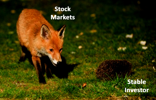 Fox and Hedgehog - Markets & Investors - Good to Great