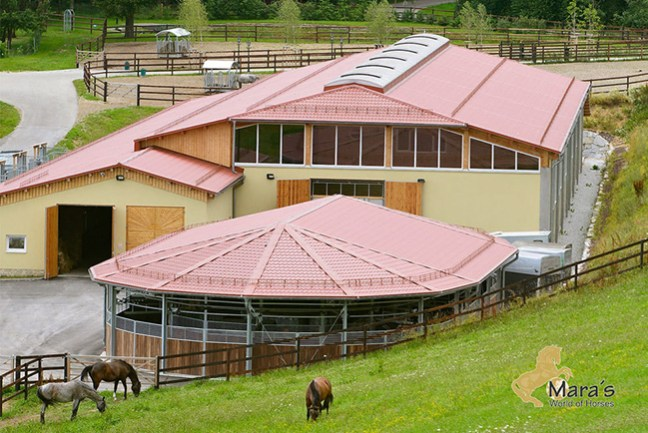 Beautiful horse property for sale in Austria