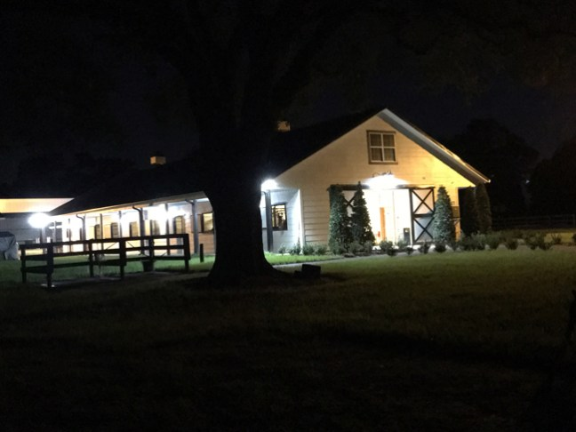 night time at the stables