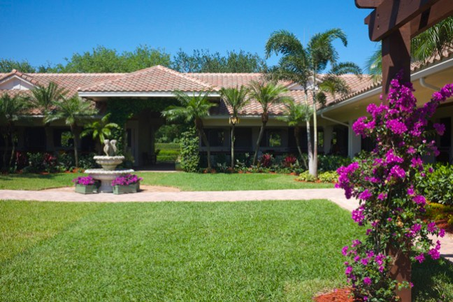 lush Florida horse property near Wellington