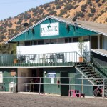 Around the Barn with a Los Angeles Equestrian