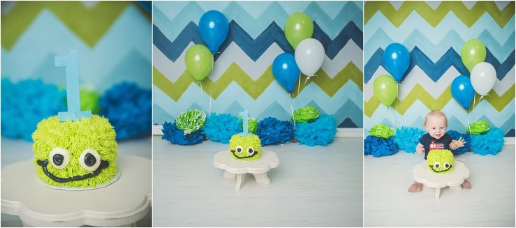 Carlisle Cake Smash Blue Green Logan Utah Photographer