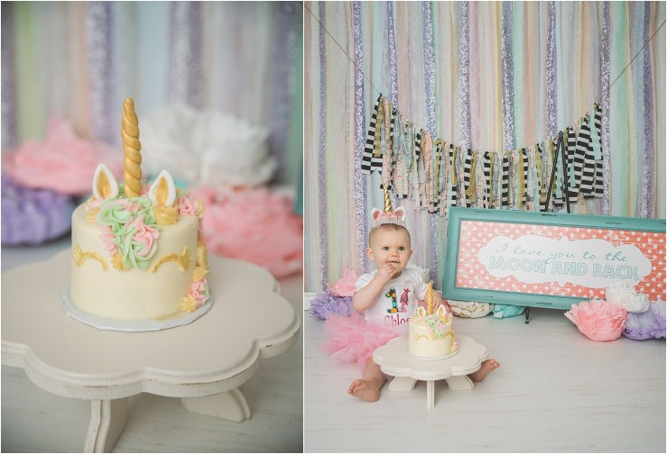 Anderson Logan Utah Cake Smash Photographer