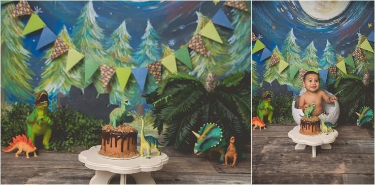 Dinosaur Cake Smash Logan Utah Cake Smash Photographer