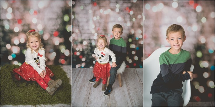Larson Christmas Mini 2018 Logan Utah Photographer