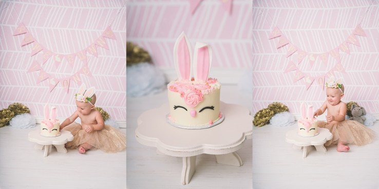 Some Bunny is One Utah Cake Smash Photographer